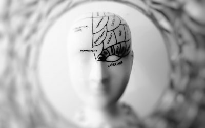 The Unique Psychological Needs That Drive Self-Service Analytic Usage